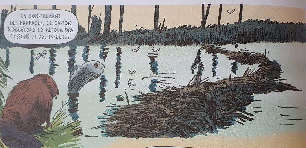Une image contenant eau, oiseau, troupeau, grand  Description générée automatiquement