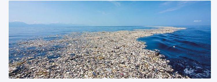 Une image contenant nature, plage, eau, extérieur  Description générée automatiquement